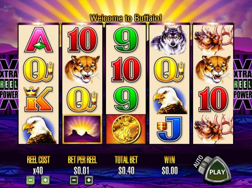 White Buffalo HTML5 New Online Slot by Amaya